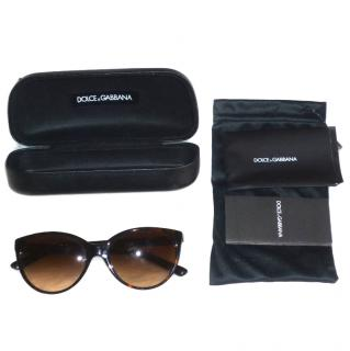 Dolce & Gabbana D&G Brown Sunglasses