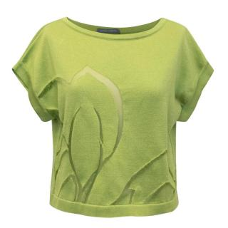 Alberta Ferretti Light Green Crop top