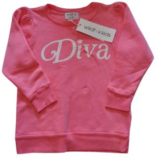 Wildfox 'Diva' Pink Sweatshirt Age 12yrs Brand New with Tags