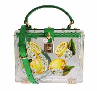 Dolce Gabbana Plexi Lemon Motive Painted Hand Shoulder Bag