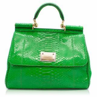 Dolce & Gabbana Green Sicily Python Top Handle Bag