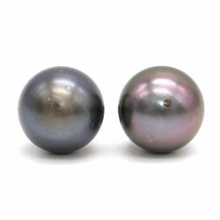 Bespoke Black Freshwater Pearl Stud Earrings