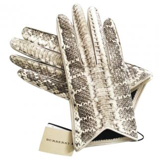 Burberry Cleo Snakeskin Gloves - Never Been Worn with Tags
