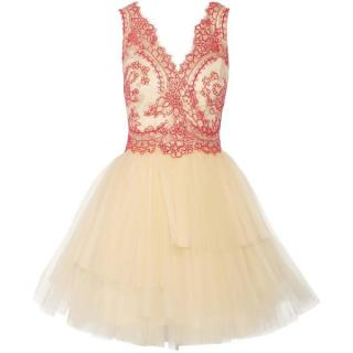 Notte by Marchesa Corded Lace And Tulle Mini Dress