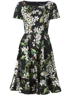 Dolce and Gabbana Orange Blossom print poplin dress