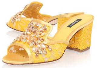 Dolce & Gabbana Embellished Lace Mules