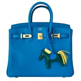Hermes Birkin 25 - Baby Birkin in Blue Zanzibar and Gold Hardware