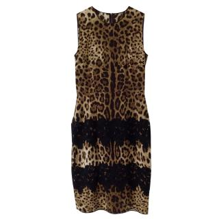 Dolce & Gabbana Silk Blend Leopard Print Dress