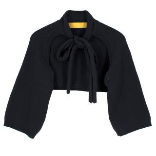 Lanvin Cashmere Cropped Pussybow Tie Cardigan