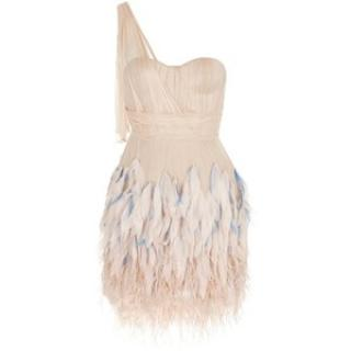 Matthew Williamson Silk & Feather Tulle Dress