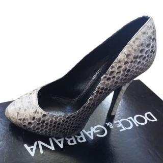Dolce & Gabbana Python Pumps 37