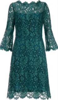 Goat Lace A-Line Knee Length Dress