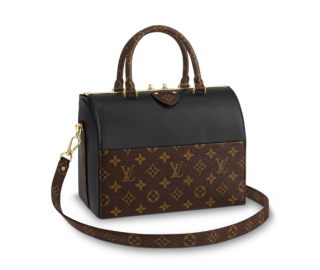 Louis Vuitton Limited Edition Sold Out Speedy Doctor 25