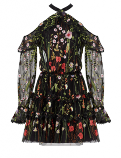 Alexis Adeline Floral Embroidered Dress