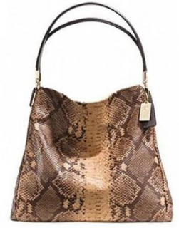 Coach Snakeskin Embossed Phoebe Shoulder Bag