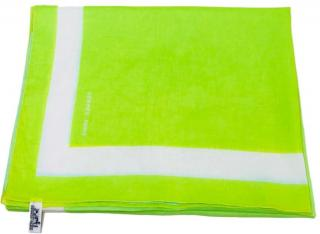 Hermes Lime Green Scarf