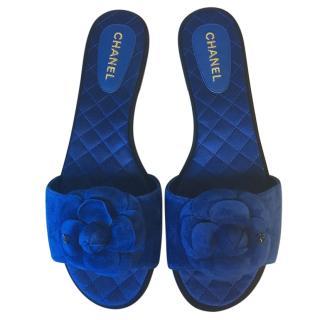 Chanel Blue Suede Camellia Slides