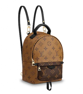 Louis Vuitton Palm Springs mini Reverse Monogram backpack