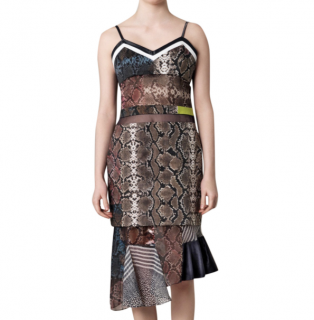 Preen Anje Snake/Stripe Print Multi Textile Dress