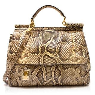 Dolce & Gabbana Python Large Sicily Bag