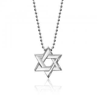 Alex Woo Star Of David Necklace
