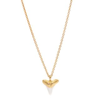 Missoma Lucy Williams Shark Tooth Necklace