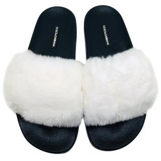 Dolce & Gabbana white rabbit fur slides