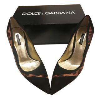 Dolce & Gabbana Leopard Print Black Pumps