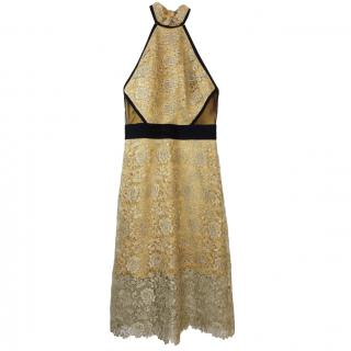 Catherine Deane Chiffon-panelled metallic lace dress