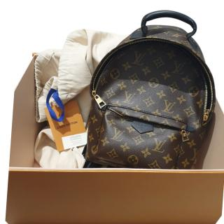 Louis Vuitton Palm Springs PM Backpack