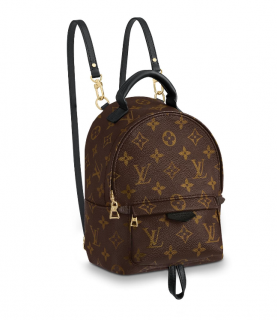 Louis Vuitton Palm Springs Monogram Mini Backpack