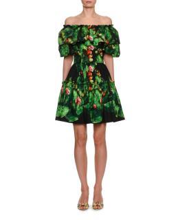 Dolce & Gabbana Cactus & Floral Print Cotton Poplin Mini Dress