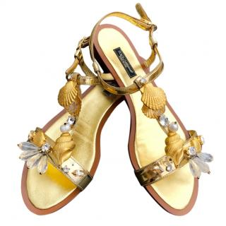 Dolce & Gabbana gold leather shell and crystal embellished flat sandal