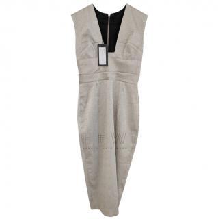 Alex Perry Andrea Metallic Sleeveless Dress