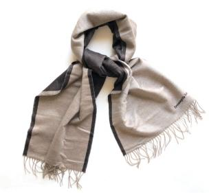 Ermenegildo Zegna Silk Fringed Scarf