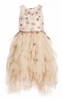 Lesy gold tulle & sequin dress