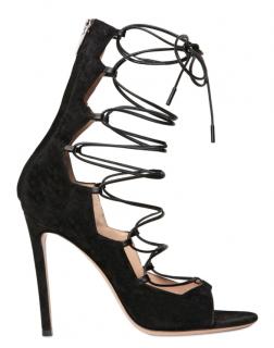 Gianvito Rossi Black Frantic Lace-up Suede Black Sandals