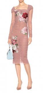 Dolce & Gabbana La Dolce Vita blush tulle and floral applique dress