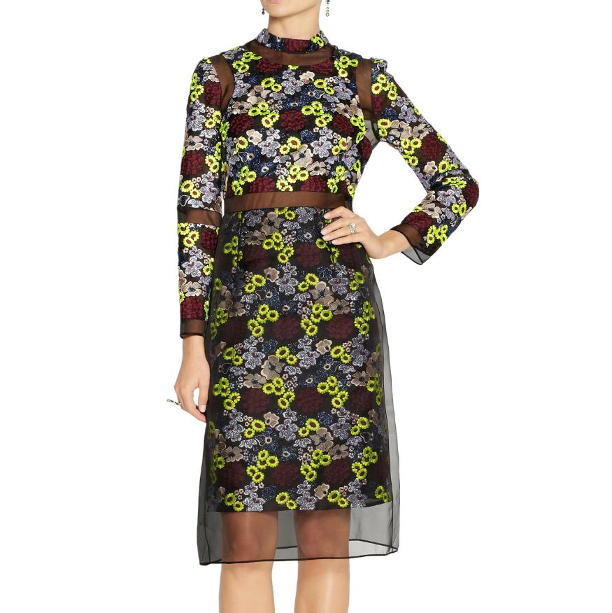 Erdem Phyllis Embroidered Organza Dress