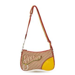 Christian Dior crossbody Rasta double saddlebag in calfskin and canvas