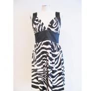 Celine Zebra Print Dress