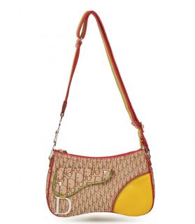 Dior Canvas & Leather Rasta Oblique Double Saddle Bag