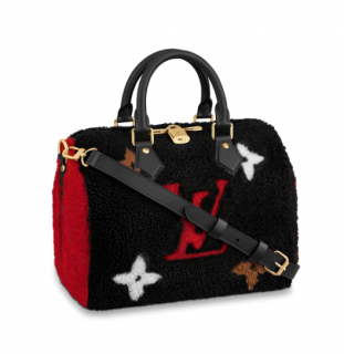 Louis Vuitton Teddy Speedy Bandouliere 25