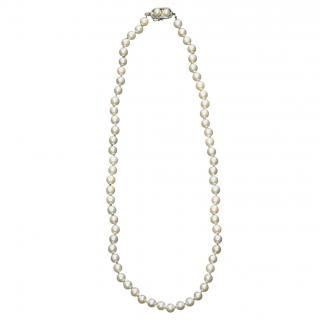 Bespoke Vintage Saltwater Pearl Necklace