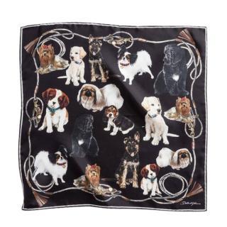 Dolce & Gabbana Silk Dog Print Scarf