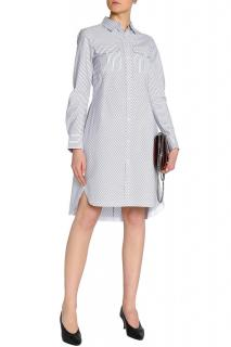 Rag & Bone Pinstripe Shirt Dress