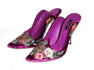 Dolce & Gabbana Purple Embellished Velvet Mules