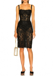 Dolce & Gabbana Sheer Floral Lace Fitted Dress