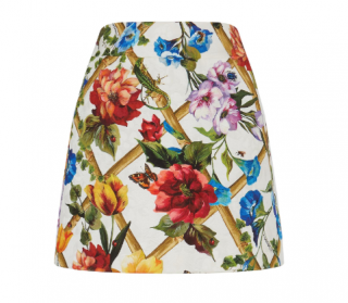 Dolce & Gabbana Printed Jacquard Miniskirt