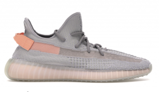 Adidas 350 Yeezy Boost True Form Sneakers